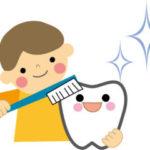歯医者さんが使ってる歯ブラシ!ヒルナンデスで紹介!プラウトにテペ!