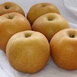 あさイチの梨「新甘泉」を通販で買う方法!